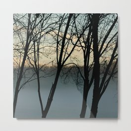 Trees at Dawn Metal Print