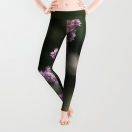 Purple wildflower in Dogtown Leggings