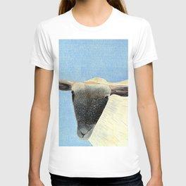 Cotswold sheep T-shirt