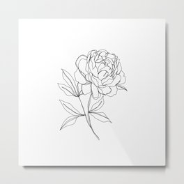 Botanical illustration line drawing - Peony Metal Print