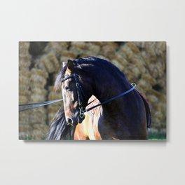 hay bale horse Metal Print