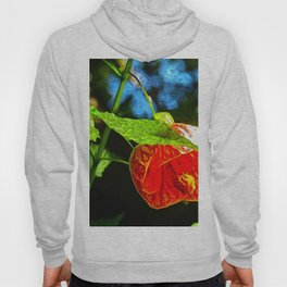 Abutilon In The Morning Sun DB by David Randal Miller Hoody