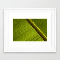 banana leaf Framed Art Prints featuring Banana Leaf by Maria Heyens