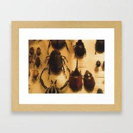 Buggy Framed Art Print