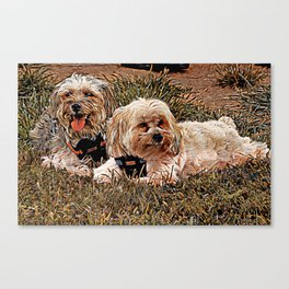 Penny & Copper Canvas Print