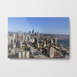 From the Needle Metal Print
