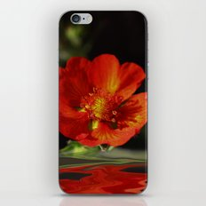 Little red Bloom iPhone & iPod Skin