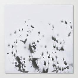 Souls Canvas Print