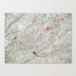 Cardinal Trio in the Snow Canvas Print