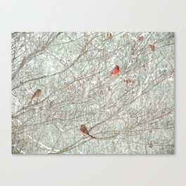 Cardinal Trio in the Snow Canvas Print