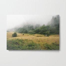 Rolling Fog Metal Print