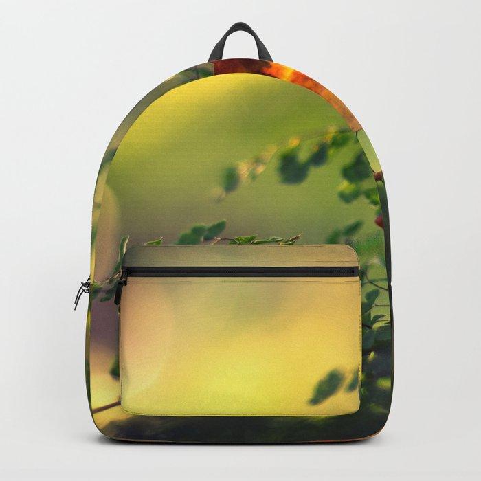 Graceful Backpack