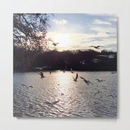 Birds over lake; winter sunset; dead trees Metal Print