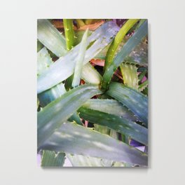 texture of tropical plants in green color. For clothes, furniture, art in general, other products Metal Print