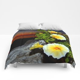 Evening Rhapsody Comforters