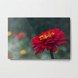 One among many - Flower Photography Metal Print