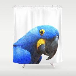 Blue Parrot Portrait Shower Curtain