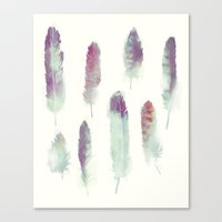 feathers Canvas Prints featuring Feathers // Birds of Prey by Amy Hamilton