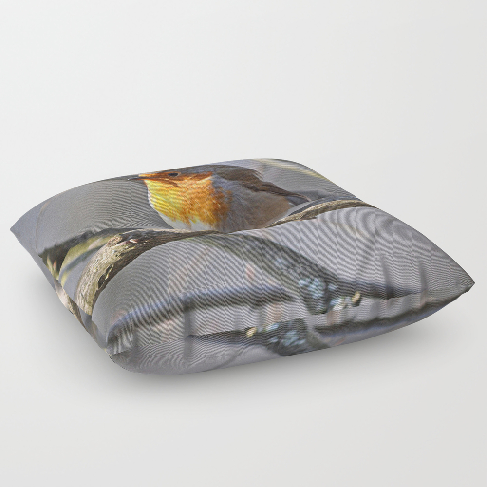 Robin Redbreast Square Floor Pillow by Pirminnohr (FPL915575) photo
