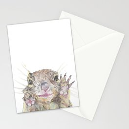 Rainbow Squirrel Stationery Cards