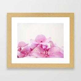 Floreta rosa Framed Art Print