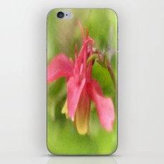Pink Aquilegia iPhone & iPod Skin