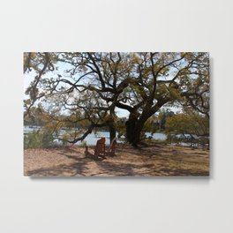 Peace By The Creek Metal Print