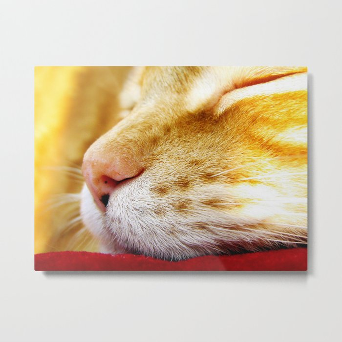 No Day Is So Bad It Can't Be Fixed With A Nap. Metal Print