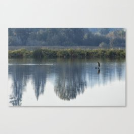 Solitary Blue Canvas Print