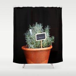 Lavender Plant Shower Curtain