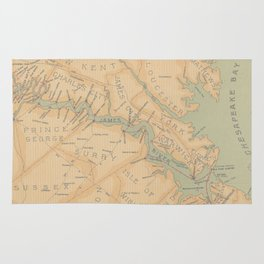 Vintage Map of The James River (1899) Rug