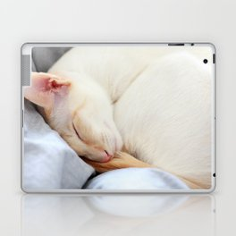 Cat Nap Laptop & iPad Skin