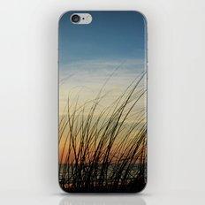 Sunset through the sea weeds iPhone & iPod Skin