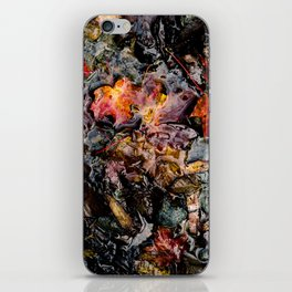 Leaves Submerged iPhone Skin