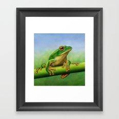 Moltrecht's Green Treefrog Framed Art Print