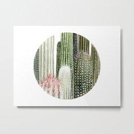 Circular Cacti Metal Print