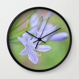 Simple Agapanthus Wall Clock