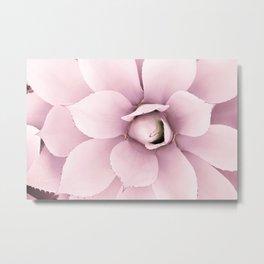 Delicate Pink Agave Metal Print