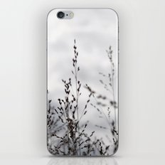 Grey Grasses iPhone & iPod Skin