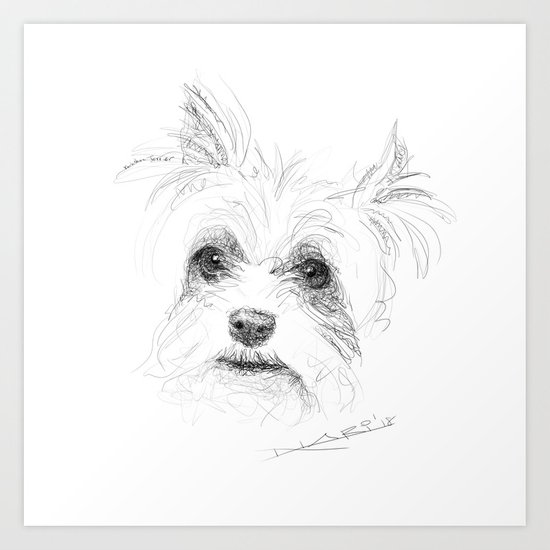 Yorkshire Terrier by powerfulcreation