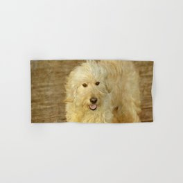 Dog Goldendoodle Golden Doodle Hand & Bath Towel