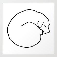 Curled Dog Art Print