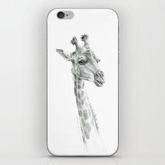 Giraffes G55a iPhone & iPod Skin