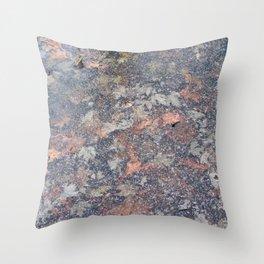 Seasons Changing Throw Pillow
