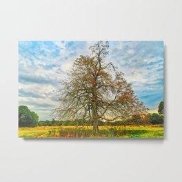 Countryside at Autumn, Norfolk, U.K Metal Print