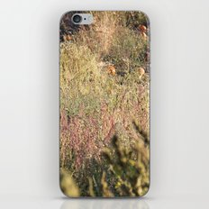 In The Field iPhone & iPod Skin