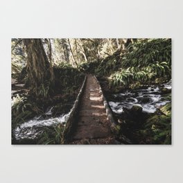 Hoh Rainforest River Trail Canvas Print
