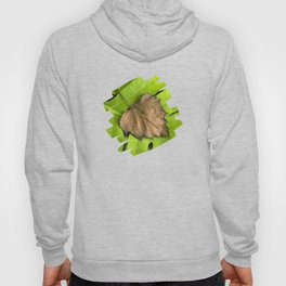 Old and New Leaf Abstract Art Hoody