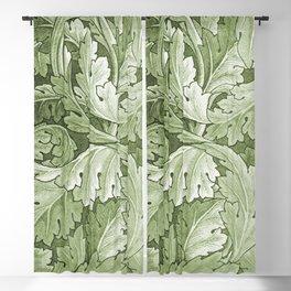 Celery Green Acanthus Plant Blackout Curtain