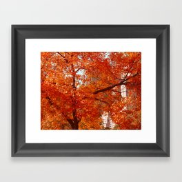 New York City Foliage Framed Art Print